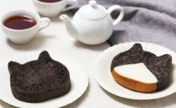 ネコ好きな演歌歌手、藤あや子さんの愛猫「マル」と「オレオ」を再現した食パンが期間限定でねこねこ食パンから発売