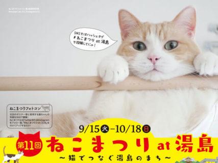 猫が似合う街・湯島で11回目の「ねこまつり」が開催!今回は地元の12店舗が参加