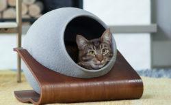お手入れが超簡単!洗濯機&乾燥機でまるごと洗える猫ベッド「キャットソル」が日本初上陸