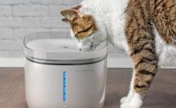 最新モデルは除菌機能も搭載!スマホで水質をチェックできるペット用給水器「Petoneer Fresco Ultra (ペットニア フレスコ ウルトラ)」