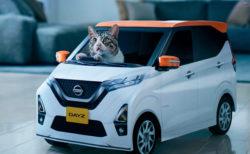 日産がネコ専用の軽自動車「にゃっさんデイズ」を開発!100名に当たるキャンペーン実施中