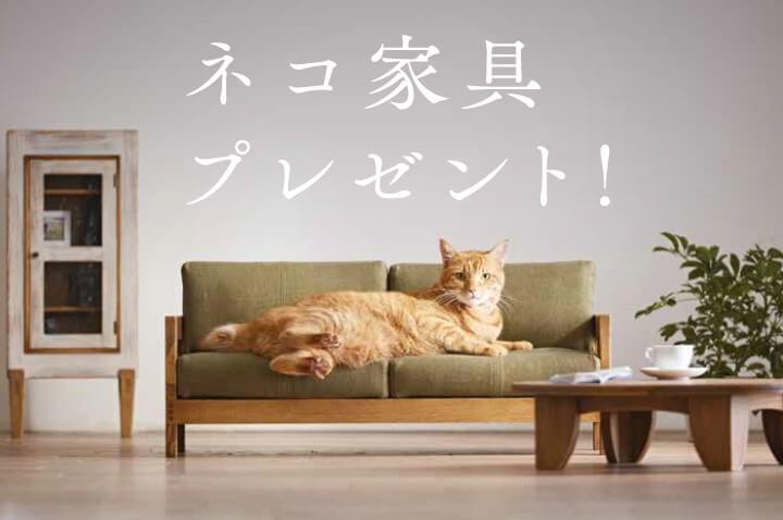 猫のためのハイクオリティ家具「ネコ家具」のプレゼントキャンペーン