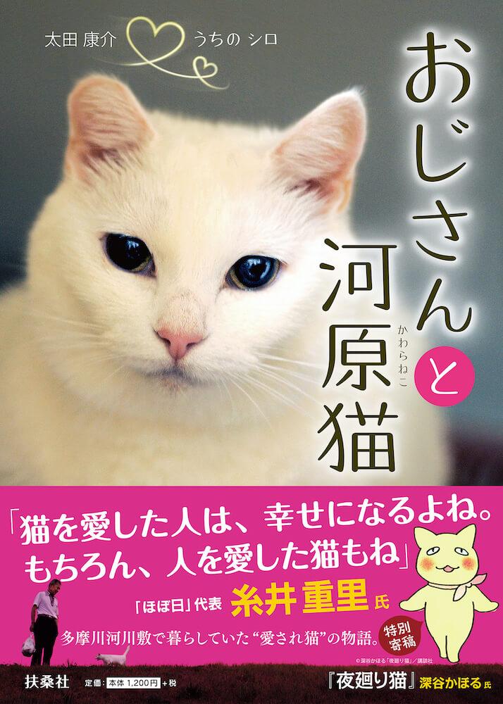 書籍「おじさんと河原猫」の表紙イメージ