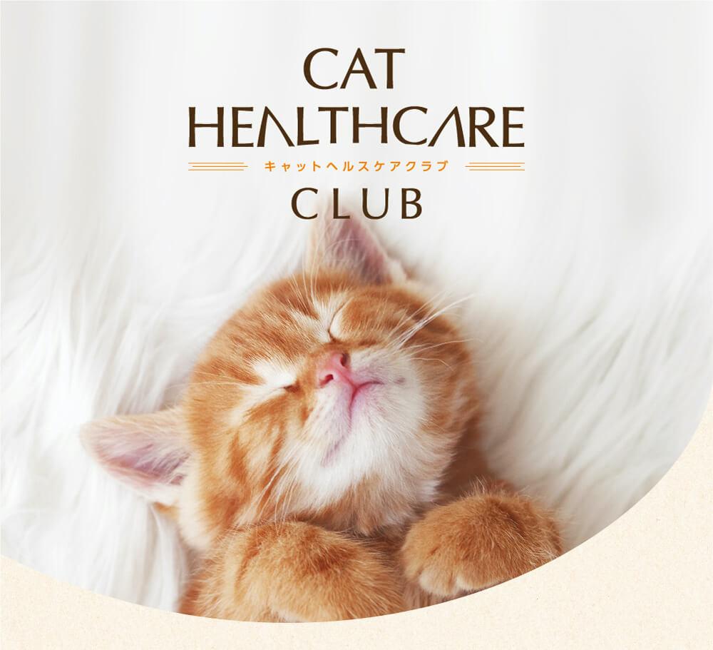 猫の体調を獣医師と見守るサービス「CAT HEALTHCARE CLUB(キャットヘルスケアクラブ)」