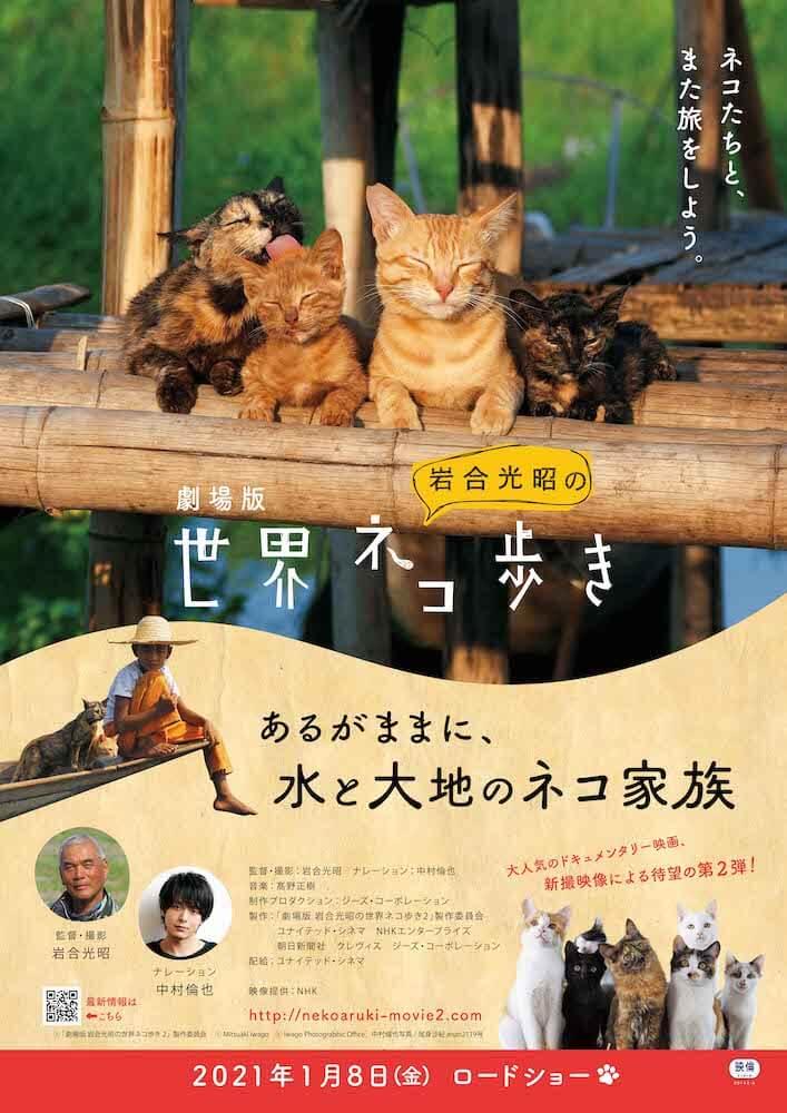 映画『劇場版 岩合光昭の世界ネコ歩き あるがままに、水と大地のネコ家族』 のポスター&メインビジュアル