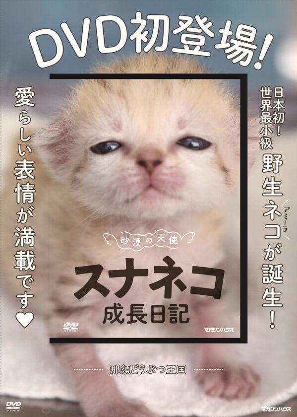 DVD「砂漠の天使スナネコ成長日記」製品パッケージ
