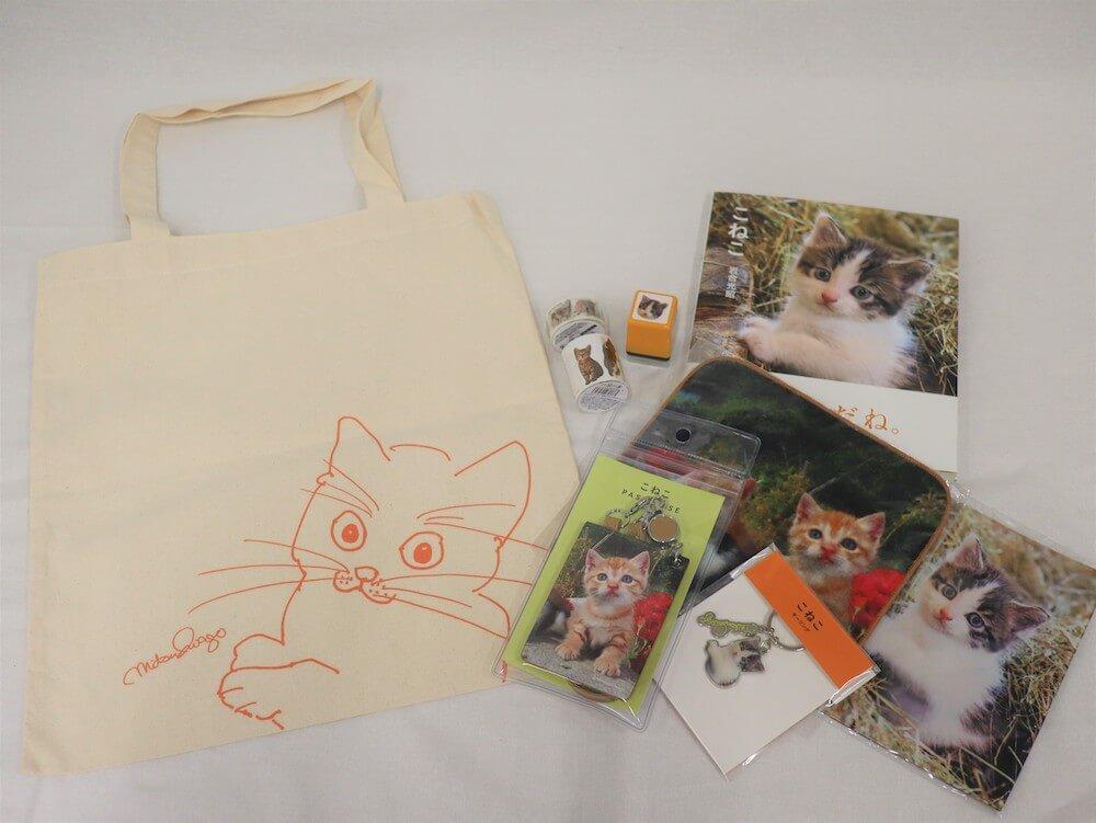 「岩合光昭写真展 こねこ」の会場で販売されるオリジナル猫グッズの実物イメージ