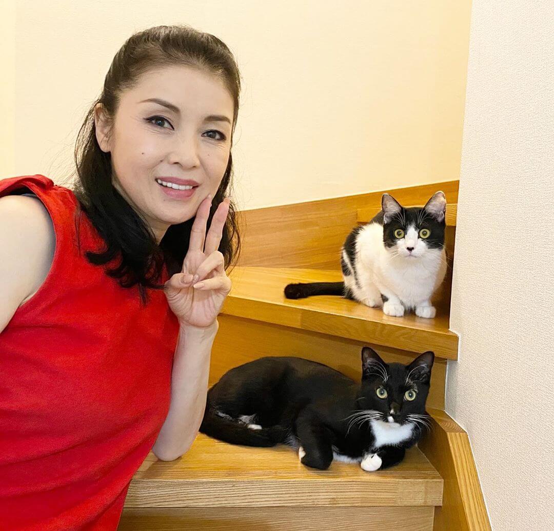 演歌歌手の藤あや子さんと、愛猫の白黒猫「マル」くんと、ハチワレ猫の「オレオ」ちゃん。
