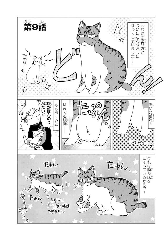 デブ猫の「もなか」の紹介 by 漫画「おふとりさま猫日和」のサンプル