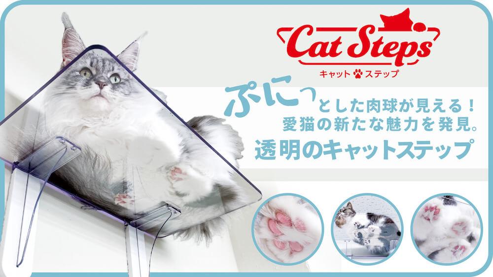 透明なキャットステップのメインビジュアル by タカラ産業