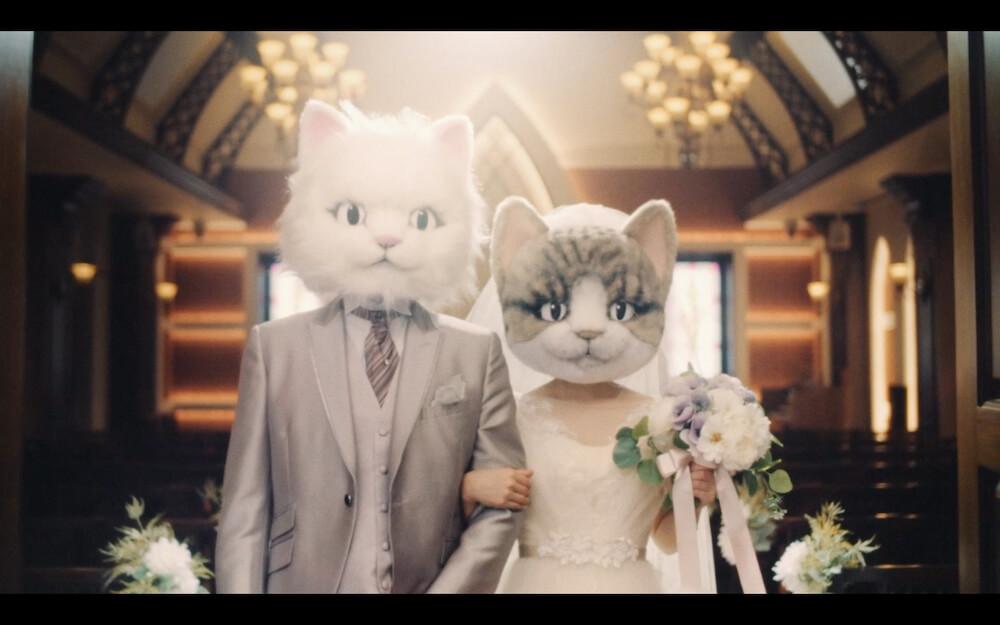 PAUL & JOEの一部店舗に展示されている猫マネキン1