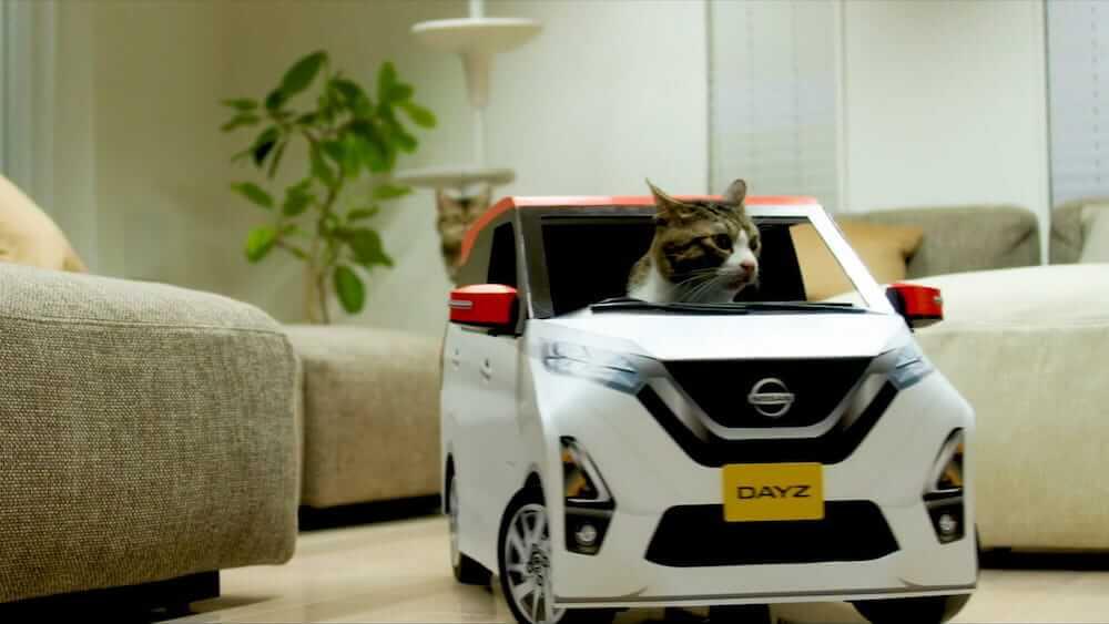 ねこ用軽自動車「にゃっさんデイズ」を室内で運転する猫
