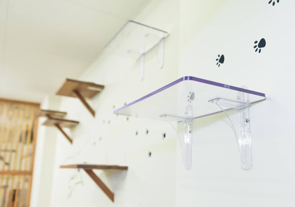 透明なキャットステップを壁に設置したイメージ by タカラ産業