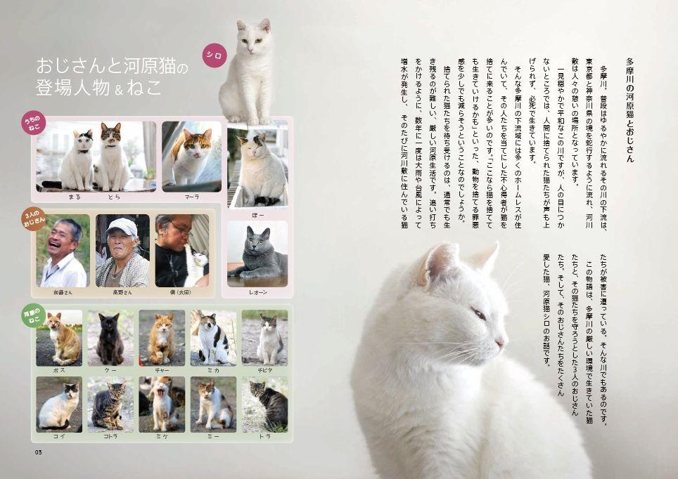 書籍「おじさんと河原猫」の中身イメージ