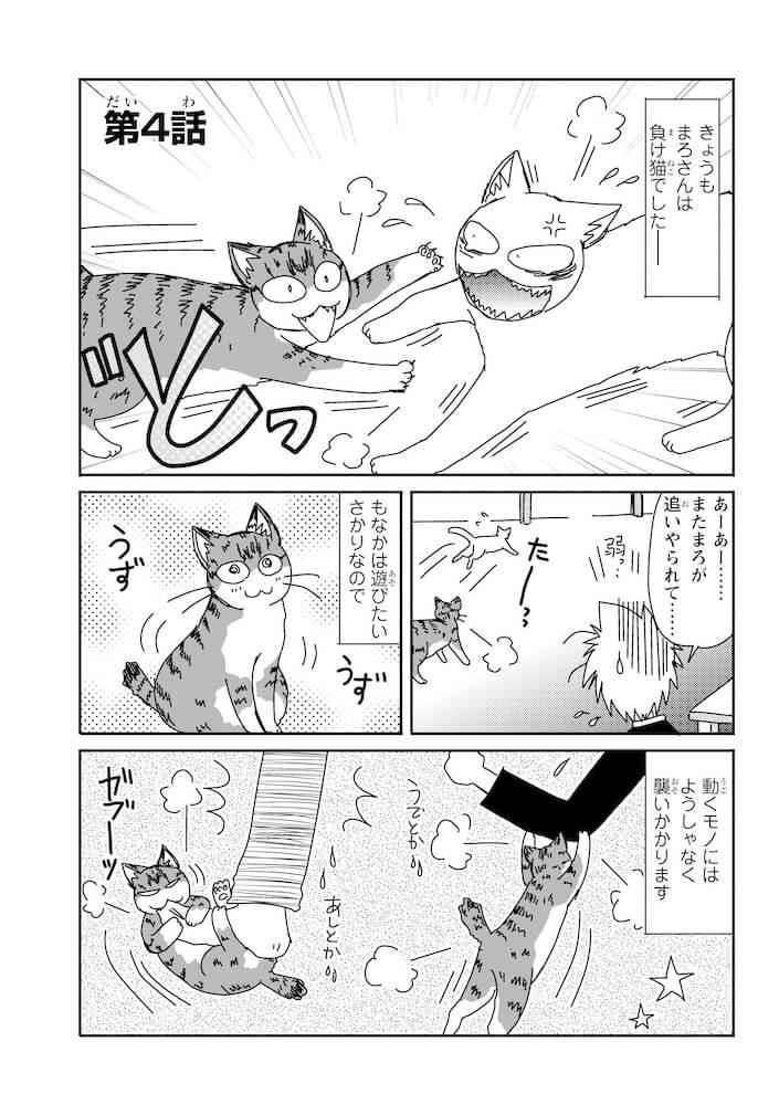 デブ猫の「もなか」と先住猫の「まろ」のドタバタシーン by 漫画「おふとりさま猫日和」のサンプル