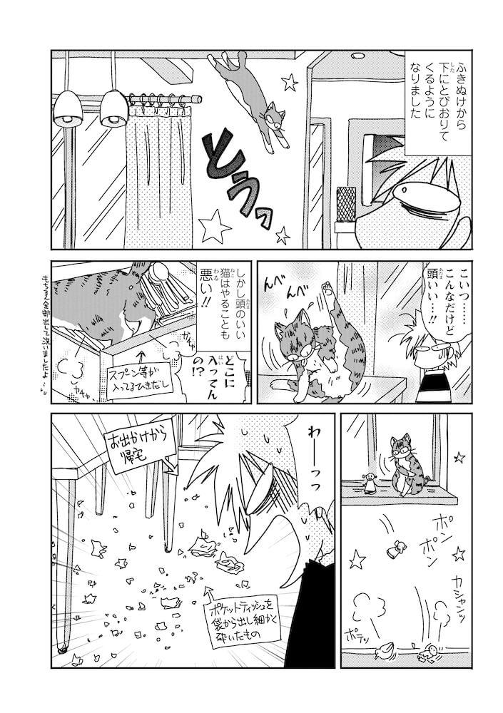 デブ猫の「もなか」が巻き起こす事件 by 漫画「おふとりさま猫日和」のサンプル