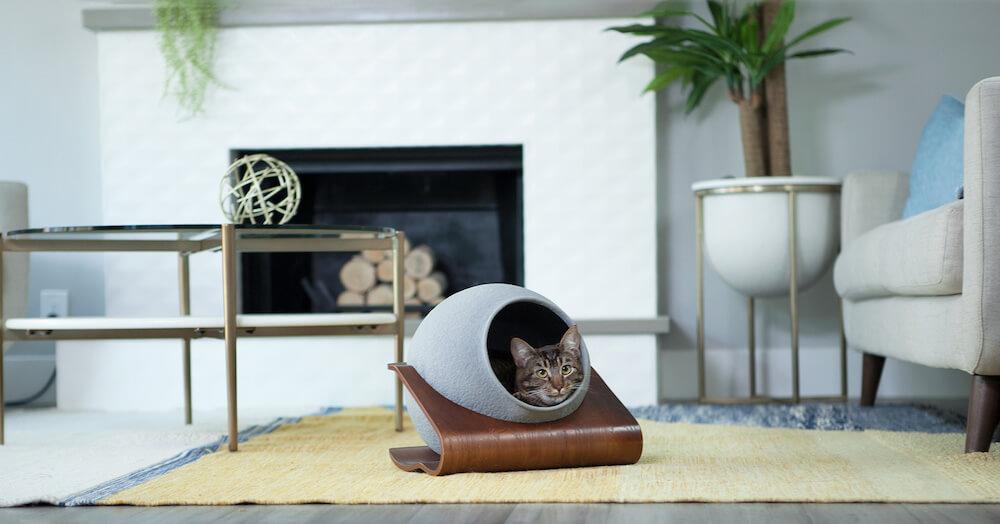 猫用ベッド「CATSOLE(キャットソル)」を猫が使用している様子