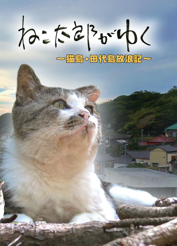 田代島の人気猫の姿を記録したDVD「ねこ太郎がゆく〜猫島・田代島放浪記〜」パッケージ
