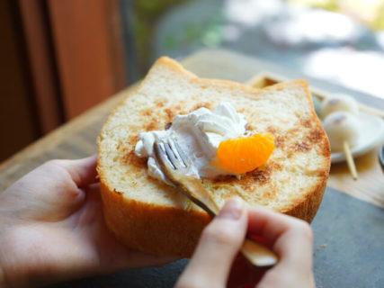 猫パンを七輪で焼いて食べられる!京都の和カフェが猫好きな人向けの朝食メニューを提供