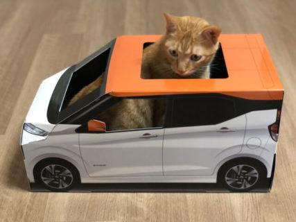 【レビュー】日産が開発した軽自動車型の猫ハウス「おうち用にゃっさんデイズ」を試してみた
