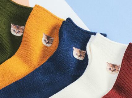 カラフルな猫の靴下がかわいい!ポールアンドジョーから秋冬の新作レッグウェアが登場