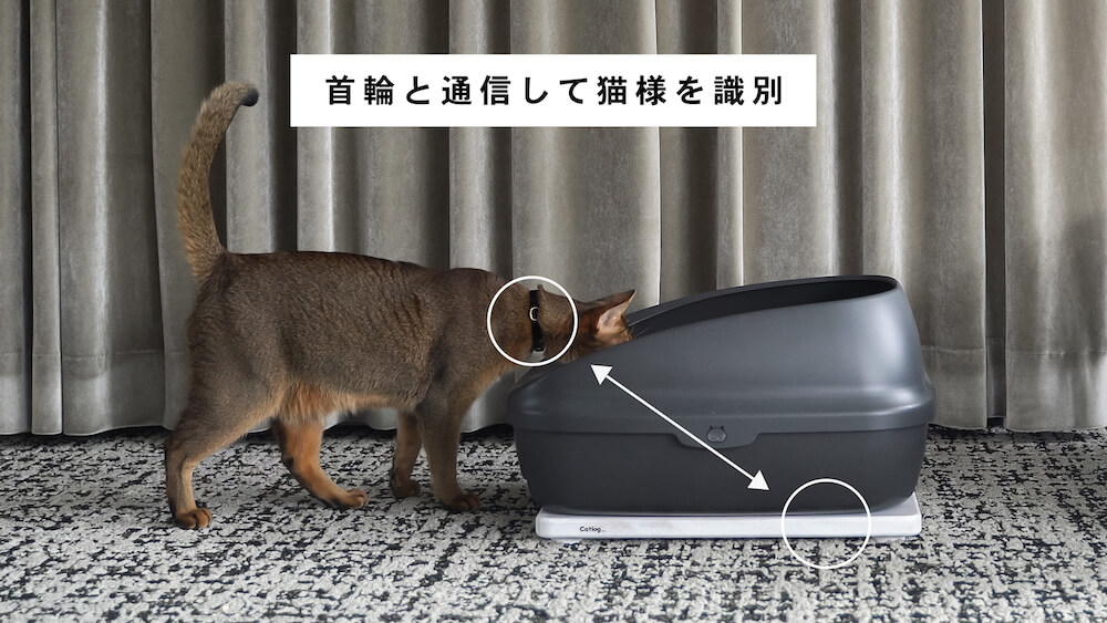 Catlogと連携して高い精度で猫を識別できるCatlog Board(キャトログボード)