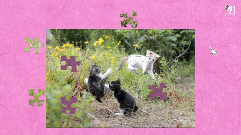 飛び猫 / 五十嵐健太のジグソーパズル、新作タイトルサンプル3
