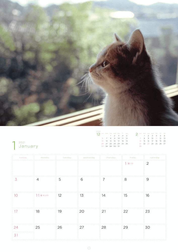「岩合光昭 福ねこ2021 カレンダー」2021年1月のカレンダーイメージ