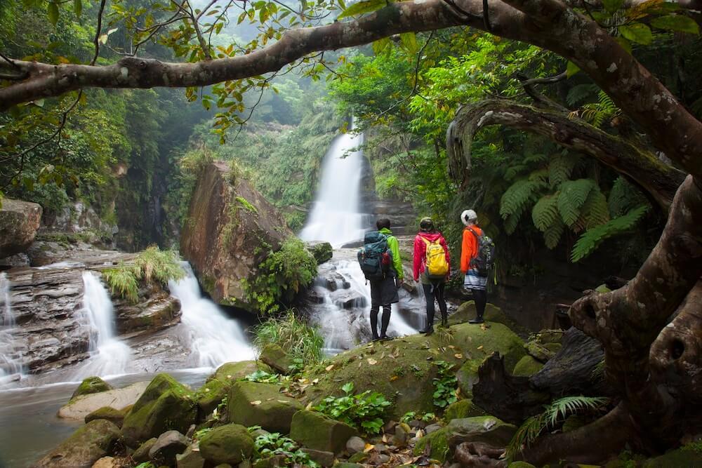 西表島ジャングル奥の秘境「ナーラの滝」