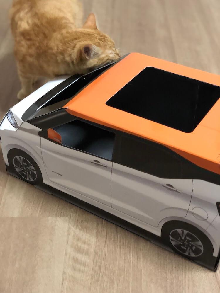 ねこ用軽自動車「おうち用にゃっさんデイズ」に自分のニオイをこすり付ける茶トラ猫
