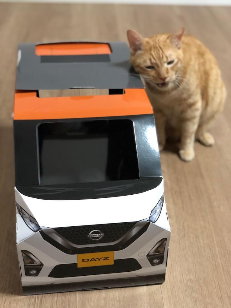 ねこ用軽自動車「おうち用にゃっさんデイズ」になかなか入らない茶トラ猫