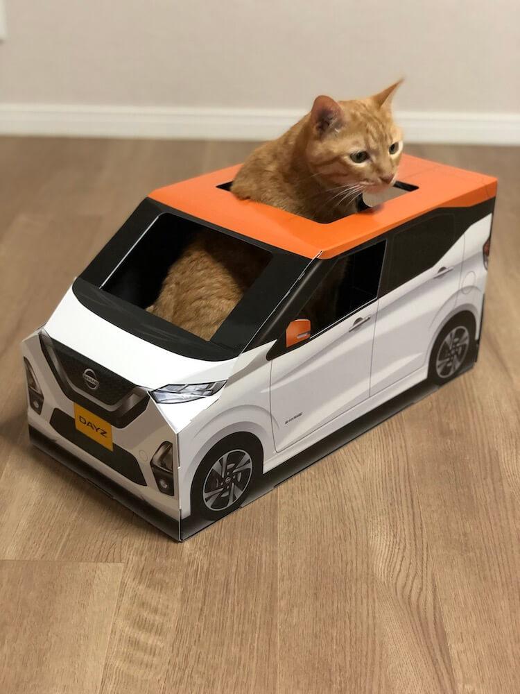 ねこ用軽自動車「おうち用にゃっさんデイズ」の中に入った茶トラ猫