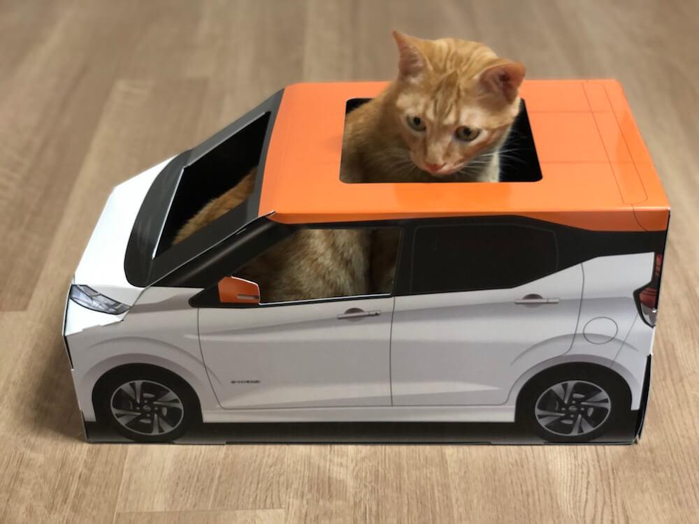 ねこ用軽自動車「おうち用にゃっさんデイズ」に入って戸惑う茶トラ猫