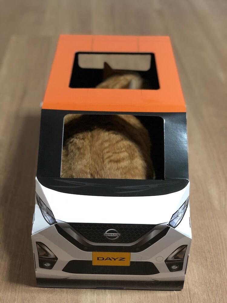 ねこ用軽自動車「おうち用にゃっさんデイズ」の中に座ってくつろぐ茶トラ猫