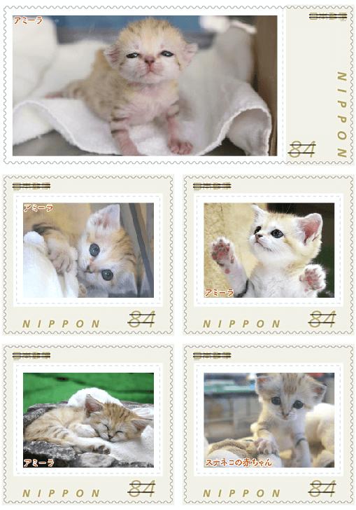 スナネコのオリジナルフレーム切手 実物イメージ1 (那須どうぶつ王国×郵便局)