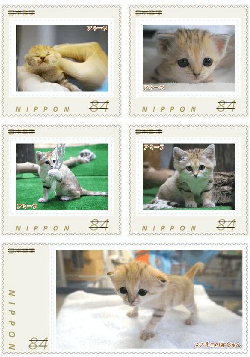 スナネコのオリジナルフレーム切手 実物イメージ2 (那須どうぶつ王国×郵便局)