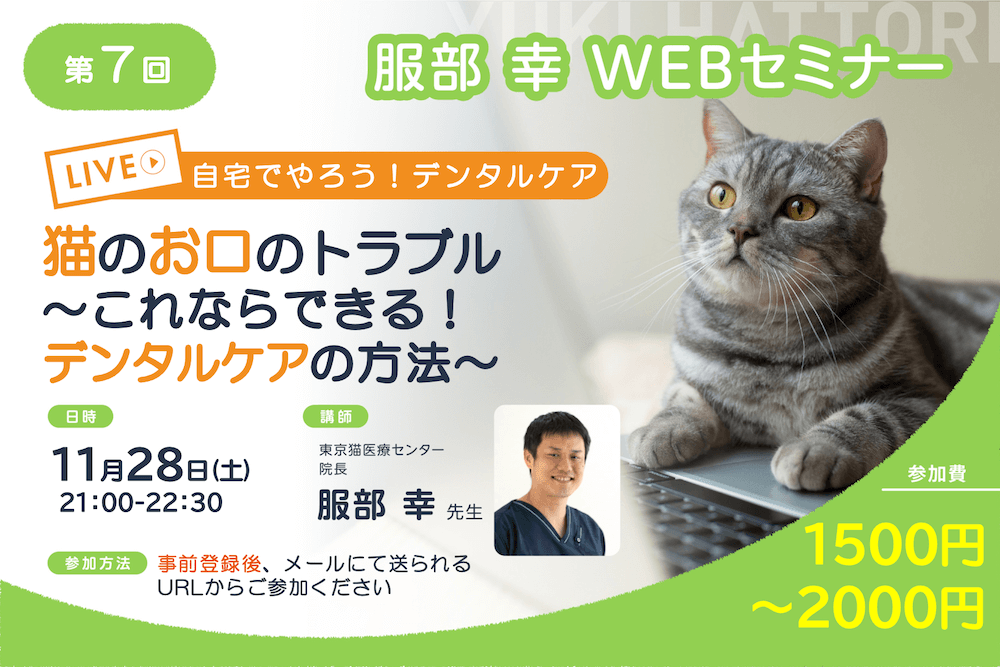 服部幸・獣医師によるWEBセミナー「猫のお口のトラブル 〜これならできる!デンタルケアの方法~」