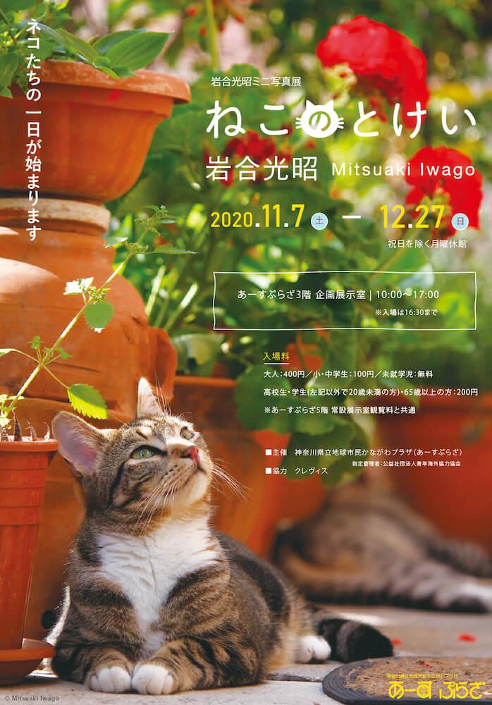 「岩合光昭ミニ写真展『ねこのとけい』 in あーすぷらざ」のチラシ表面