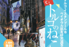 イスタンブールと猫の魅力を紹介する写真展「トルコのねこ」文京区で11月11日より開催