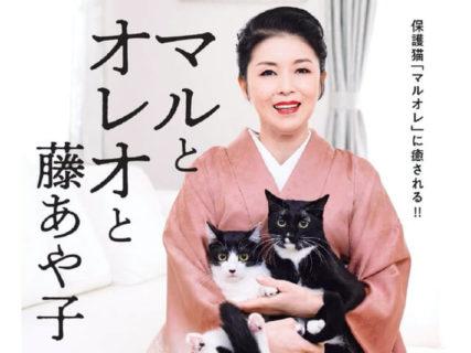 ネコ好きな演歌歌手・藤あや子さんの愛猫が写真集に!「マルとオレオと藤あや子」予約特典もあるニャ