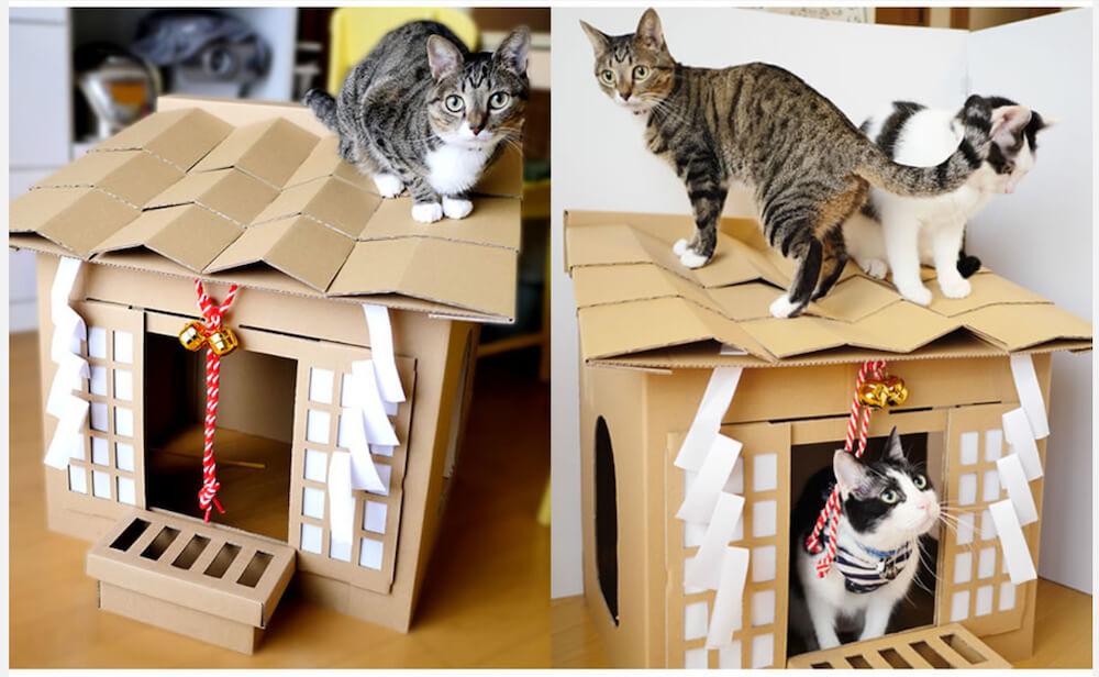猫ハウス「ネコ神社ハウス」の上に乗る猫、中に入る猫