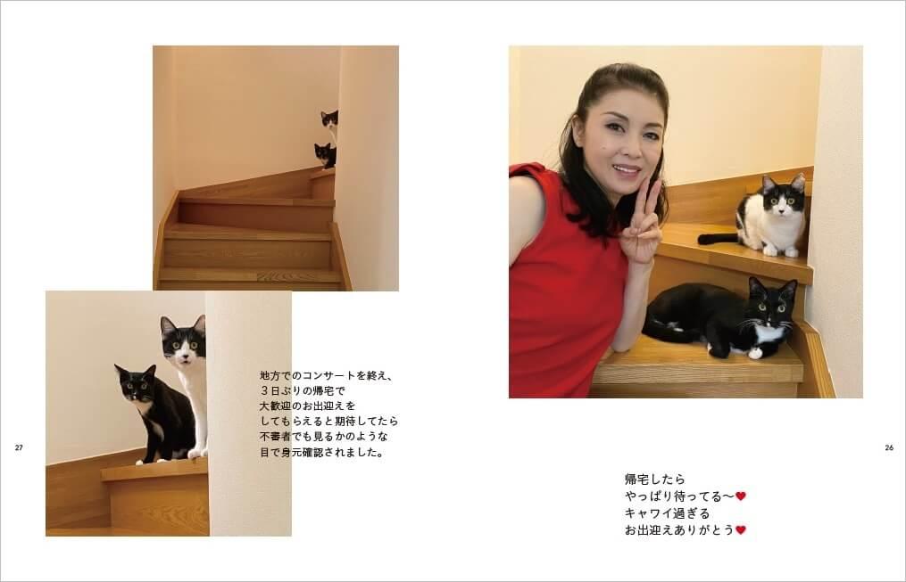 藤あや子さんと愛猫のマルオレ by 『マルとオレオと藤あや子』表紙イメージ