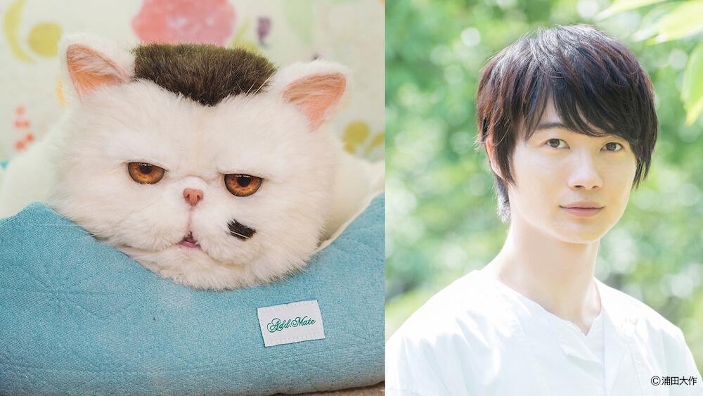 テレビドラマ「おじさまと猫」で猫のふくまるの声役を演じる神木隆之介