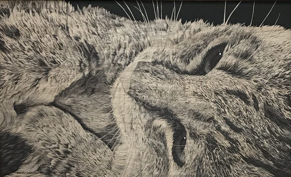 画家・山田貴裕による猫のペン画『あーおいしかったな』第39回 国際公募 日現展 衆議院議長賞 受賞作品