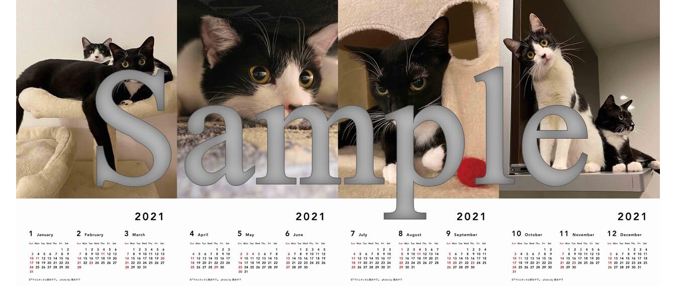 写真集 『マルとオレオと藤あや子』の予約特典カレンダーのイメージ