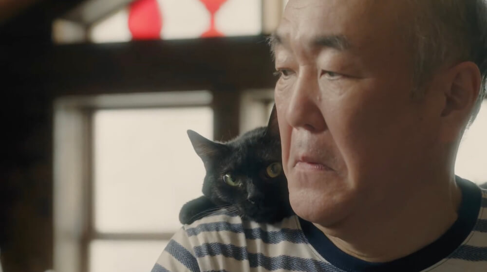 黒猫にツッコミを入れられておどおどする「ぬっくん」こと、温水洋一さん