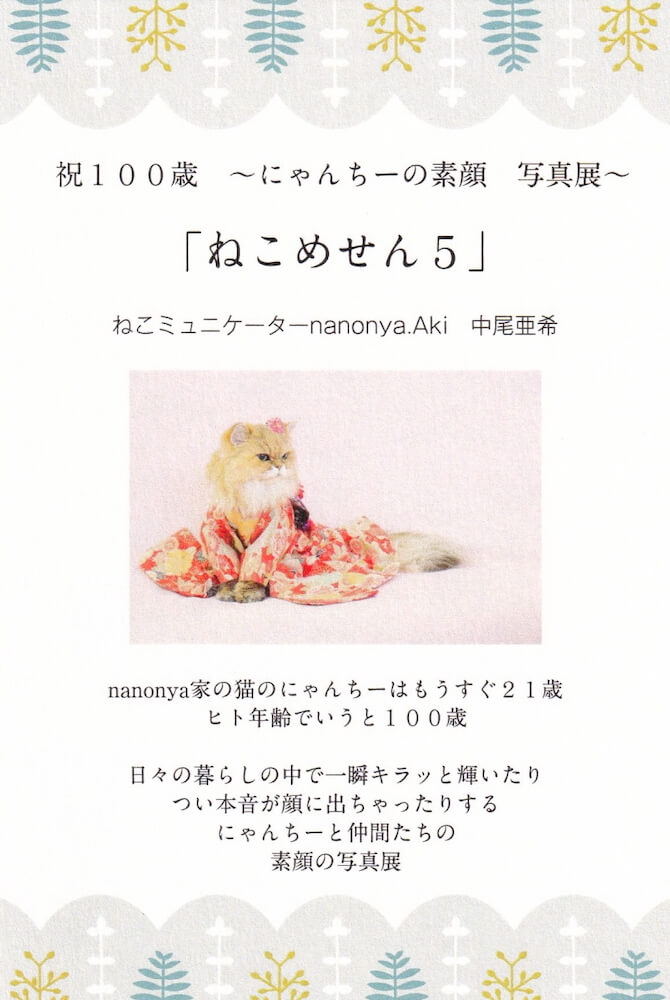 ねこミュニケーターのnanonya.Akiこと、中尾亜希さんによる写真展「ねこめせん5」のメインビジュアル