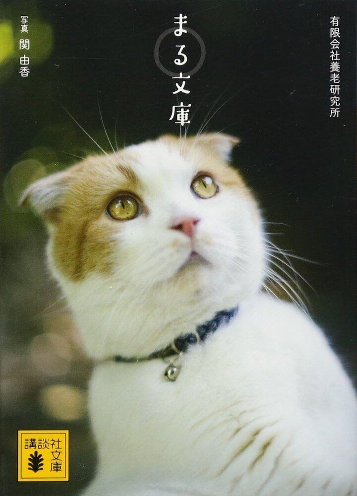 養老孟司の愛猫まるフォトエッセイ「まる文庫」の表紙