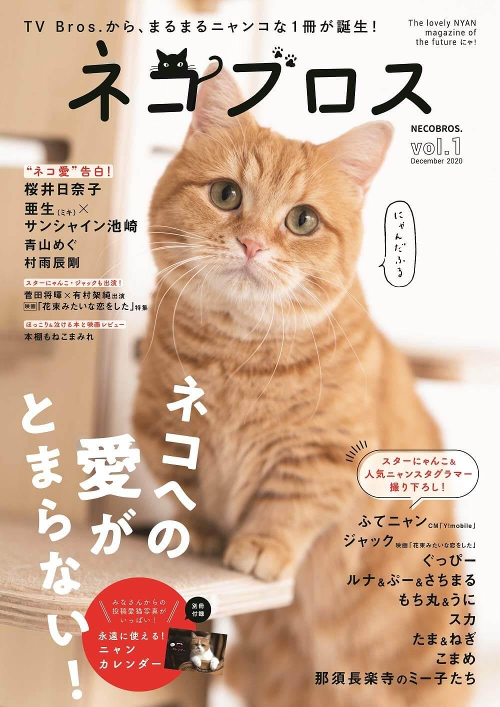 テレビブロス(TV Bros.)の猫版雑誌『ネコブロスvol.1』の表紙イメージ