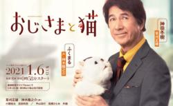 小関裕太・武田玲奈・高橋ひとみも出演決定!ドラマ「おじさまと猫」の追加キャストが発表